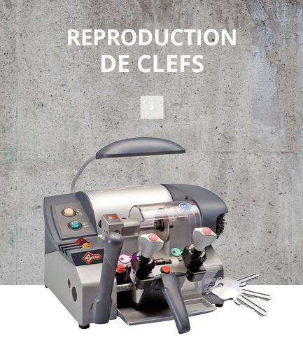 Reproduction clés